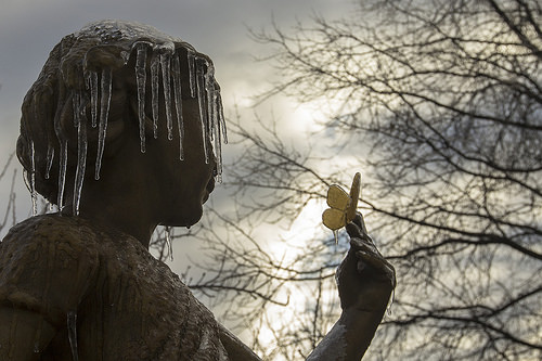 Icicles and butterfly, Congressional Cemetery