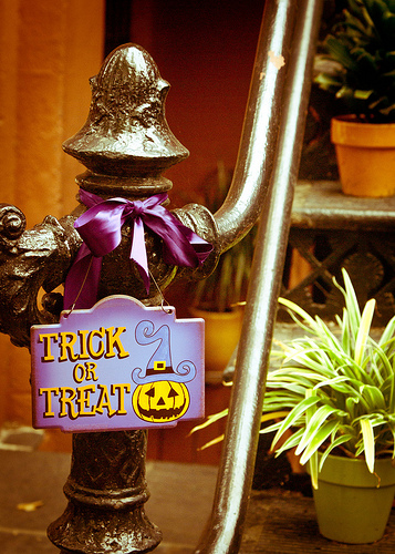 Halloween Decor (5 of 11)