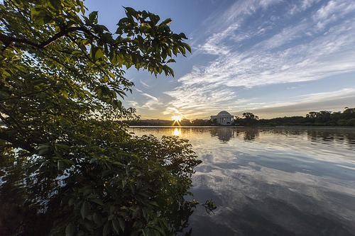 Thursday Morning On The Tidal Basin